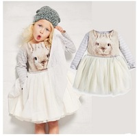 New, retails ,Free Shipping, girls T shirt+pants, girls clothes, sports suit ,1set/lot,--NB631