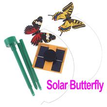 cheap flying butterfly