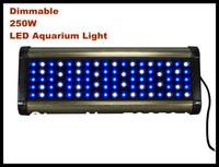 250w Led Aquarium Light 86pcsx3W Dimmable High Quality Aquarium Lighting For Marine Coral Reef