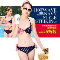 2014  Blue lily swimwear american flag swimwear women's split tube top big steel push up bikini