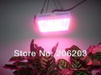 New 80*3w 9bands 240w led grow light Worldwide Free shipping 2pcs/lot for hydroponics light growing and flower