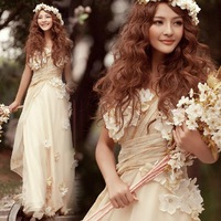 2014 Champagne color floral bride wedding dress Toast dress clothing evening dress bridal wear bridesmaid dress long design