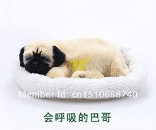 living pets promotion