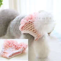 New!! Pet Dog Physiological Pants , Dog Cat Underwear, Cute, Breatheble Pet Product Free Shipping