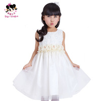 Princess 2014 female child spring one-piece dress child dress princess dress puff skirt  wedding party dress