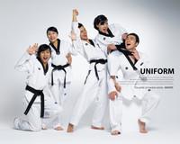 3F mooto  best quality taekwondo uniforms size110 cm to 190cm  karate judo dobok kickboxing  uniforms jiu jitsu  training