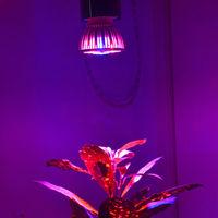 Full Spectrum Led Grow Light - Medical  Drug Flower Grow Led 9w E27 Free Ship