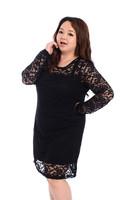 High Quality 2014 New Big Size Lace Elegant Dress Fat women Clothing Female Plus Size Long Sleeve Dresses Lady Large Clothes