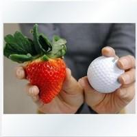 free shipping Vegetable seeds bonsai strawberry seeds edible strawberry four seasons large type big sweet taste  bag   - 50 pcs