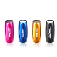 high quality mini  loudspeaker Portable Audio Player include TF card 8GB sport MP3 musci Player