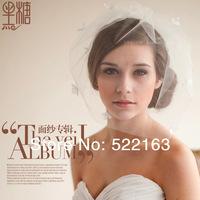Wedding hair accessory bridal veils