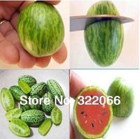 Free Shipping 10pcs/lot Bonsai Mini Watermelon Seeds Fruit seeds DIY home garden