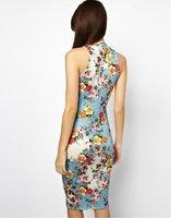 Dresses Freeshipping Vestido De Festa Women Dress New Spring And 2014 Women's Floral Stretch Slim Package Hip Vest Sleeveless