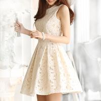 2014 spring and summer women's slim lace sleeveless one-piece dress female basic tank dress