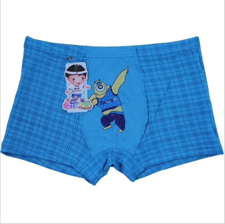 Free Shipping! Children's underwear wholesale /boys underwear model ...