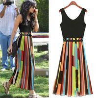 New 2014 Saia Hot Fashion Women Chiffon Dresses Elegant Brand Maxi Long Dress Women's Summer Vestidos de festa Sleeveless