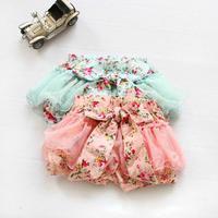 2014 the new Korean style floral bitter fleabane skirt shorts girl's lovely clothes baby girls rural skirt