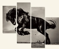 OIL PAINTING MODERN ABSTRACT WALL DECOR ART CANVAS Horse 4PC(no frame)