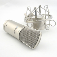Professional condenser microphone for music studio  & recording at economic price on hot sale