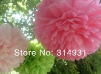 "Free Shipping 10pcs/lot 10"" 25cm Tissue Paper Pom Poms Flower Balls Wedding Party Shower Decoration FBL0025"