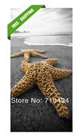 starfish sea star oil painting, free shipping