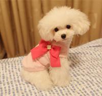 Pearl lace dog clothes pet clothes pet skirt clothes diamond bow