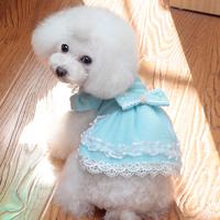 Dbb 3 flannelet lace skirt dog clothes pet summer dog pet clothes teddy