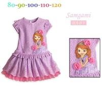 Retail , 2014 new girl dress,girl party dress,chiffon lace dress, the princess dress,children's clothes.purple Free!1pcs/lot