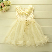 2014 New Summer girls Dream Princess party dress baby girls Boutique  Petals collar Layer upon layer yarn tutu dress 5pcs/lot