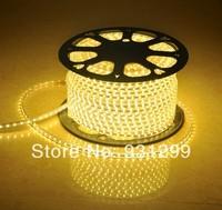 LED 5050 300SMD high voltage lights with LED lights with color led flexible light strip
