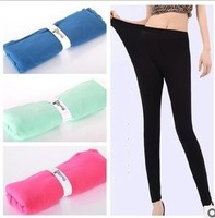 Ms. Spring new South Korea's high elasticity Han edition modal cotton Multicolor nine points leggings free postage