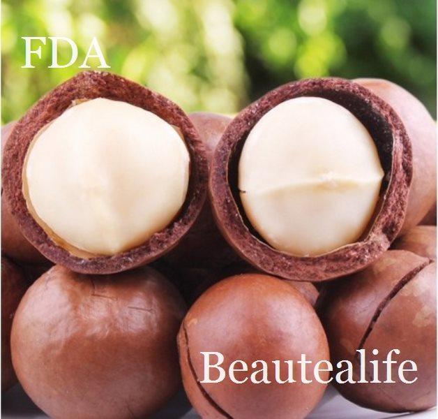 Free drop shipping 500g cream flavor snacks macadamia nuts(China (Mainland))