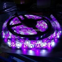 NEW 5050 RGBW LED strip,5m 300LED DC12V  IP65 waterproof LED strip light 60LEDs/ m 198901 + free shipping