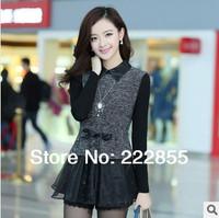 High-grade New Arrival spring 2014 Korea long sleeve lace slim dress women's top for ladies DG1039