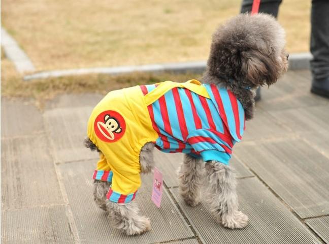 Новые товары для животных, собак Одежда