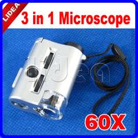 Mini 30~60X Pocket Microscope Loupe LED UV Light Magnifier CN F-36