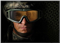 US Military Revision Desert Locust Goggle Tactical Sunglasses Airsoft Eyewear Riding Eye Protection Hiking Cycling Sun glasses
