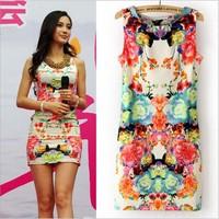 New 2014 spring Brand Womens Fashion Casual bodycon dress Flower Print Sleeveless Retro Sexy Chiffon Dress RJH13