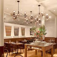 Jason miller magic  5,10,15,21 head dining room decoration LED modo Chandelier living room DNA pendent lights free shipping