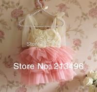 NEW ! 2014 summer girl lace tutu dress , girl tutu dress , 5pcs/lot