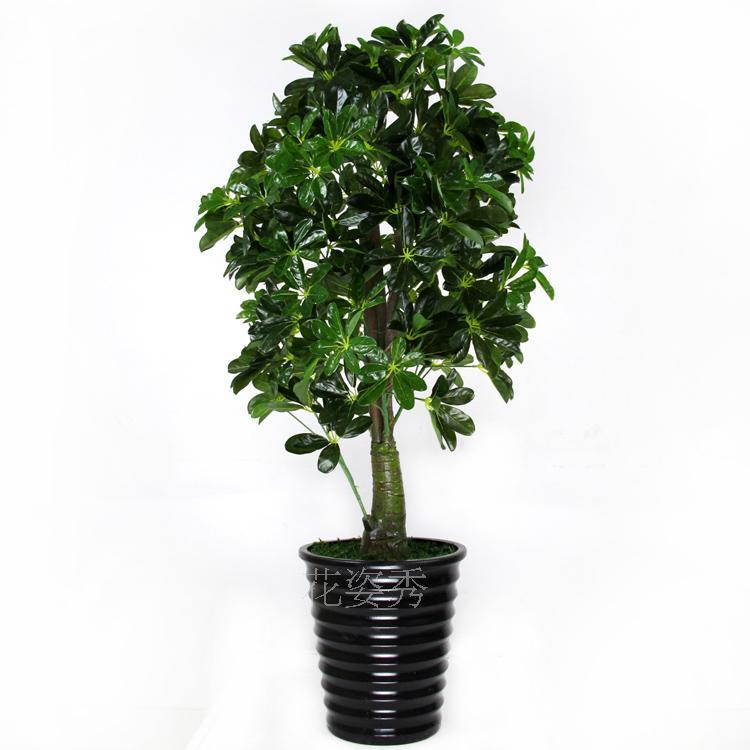 Ikea Badkamer Mengkraan ~ Decoratie Planten Woonkamer  Groothandel zijde planten bomen kopen