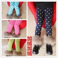 2013 autumn and winter female child dot thickening plus velvet legging