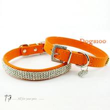 wholesale orange puppies