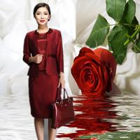 2014 women's spring fashion banquet wedding piece set mother clothing women's formal dress set 6