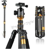 """New  carbon fiber tripod Q-666C SLR camera tripod,professional portable digital camera tripod Q666C,Max:61.5"""""""