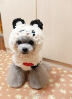 Cartoon cotton-padded jacket table dog clothes pet cotton-padded jacket