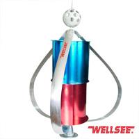 Wellsee Small Wind Turbine vertical wind generator 300w 12v / 24V