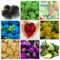 50 Pcs/ 9 Types of Strawberry Seeds, Black White Yellow Blue Green Pupple Giant Strawberries * NON-GMO Strawberry * EDIBLE