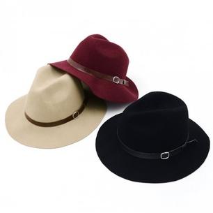1Pc 2014 New Wool Fedora Women Winter Hats Trilby Wide Brim Fedora Bucket Hat Stylish Cloche Felt Caps Bowler Free Shipping(China (Mainland))