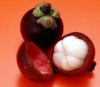 Mangosteen Seeds, Nutrient-Rich Queen Of Tropical Fruits, Fruit Seeds, 10 Seeds